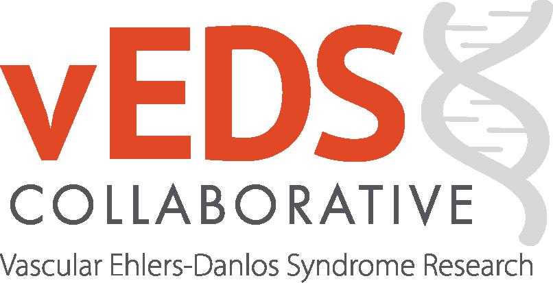 vEDS logo